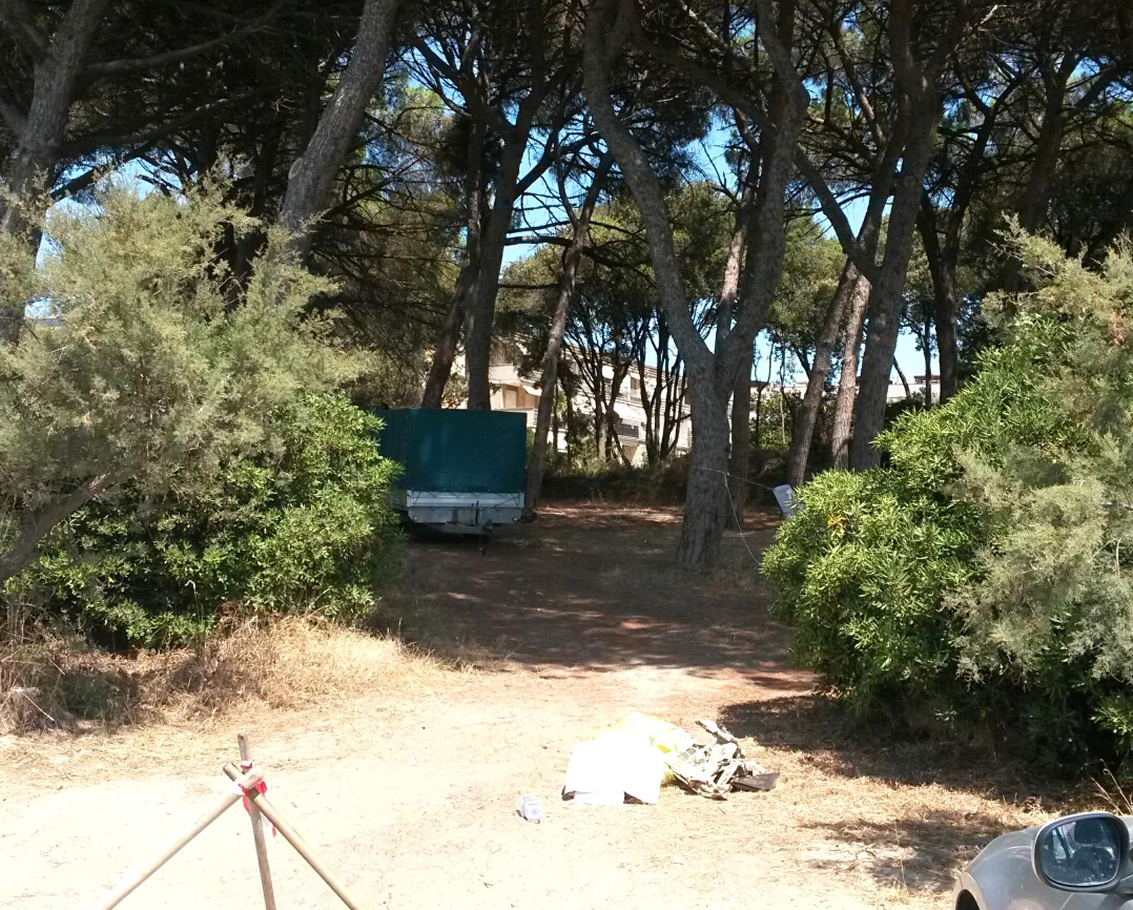 Mare e pineta. Follonica restituisce un\'area di verde a Pratoranieri ...