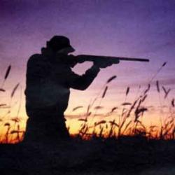 Nuova legge sulla caccia, soddisfatta la Cia Toscana