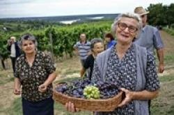 Pensionati Toscana, più servizi nelle aree rurali per evitare abbandono campagne