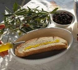 Mensa toscana, nella scuola di Montisi si mangia sano e a chilometro zero