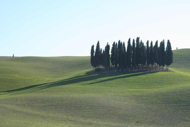 Toscana da Oscar al Travel Experience. Val d'Orcia, destinazione più ospitale d'Italia