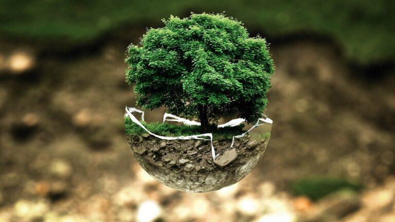 Giornata della Terra, per AdF gli obiettivi di sviluppo sostenibile dell'Agenda 2030 sono bussola per ogni azione